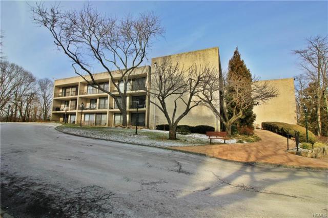 152 Overlook Avenue 2N, Peekskill, NY 10566 (MLS #4903719) :: Mark Boyland Real Estate Team