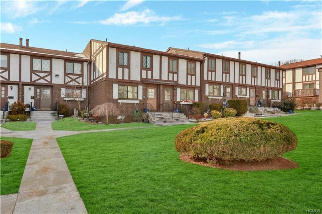 141 Buckingham Court, Pomona, NY 10970 (MLS #4903790) :: William Raveis Baer & McIntosh