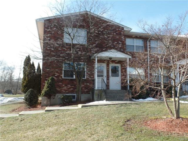 276 Temple Hill Road #1101, New Windsor, NY 12553 (MLS #4903805) :: Stevens Realty Group