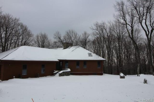 196 Revonah Hill Road, Liberty, NY 12754 (MLS #4903870) :: Mark Boyland Real Estate Team
