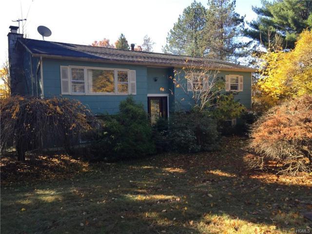 11 S Amundsen Lane, Airmont, NY 10901 (MLS #4903931) :: William Raveis Baer & McIntosh