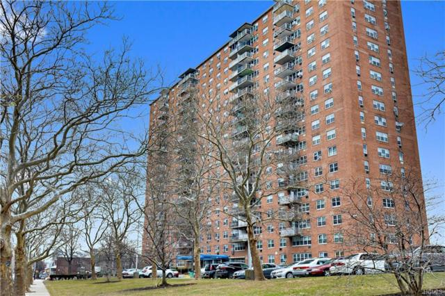 875 Morrison Avenue 15E, Bronx, NY 10473 (MLS #4904036) :: Mark Boyland Real Estate Team