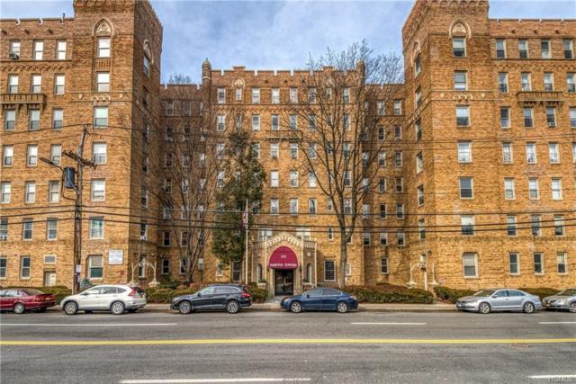 219 Bronx River Road 4C, Yonkers, NY 10704 (MLS #4904065) :: Mark Boyland Real Estate Team