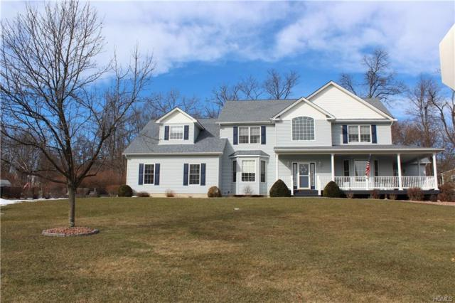103 Winding Brook Court, New Windsor, NY 12553 (MLS #4904146) :: Stevens Realty Group