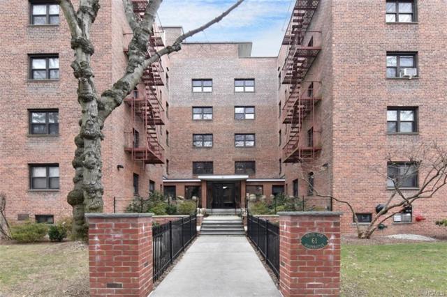 61 White Oak Street 1F, New Rochelle, NY 10801 (MLS #4904197) :: William Raveis Legends Realty Group