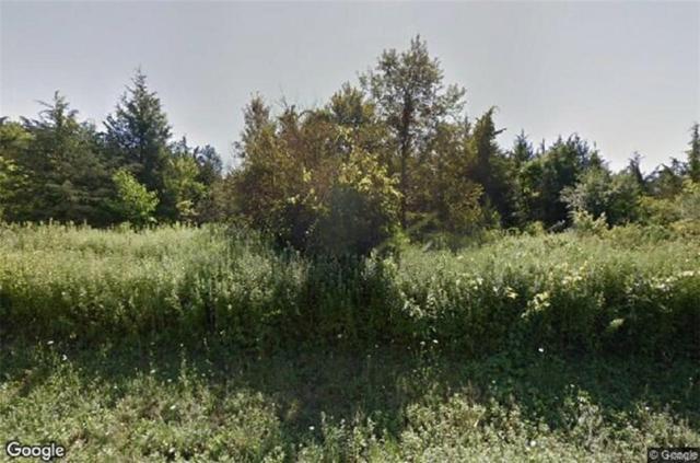 7204 Albany Post Road, Rhinebeck, NY 12572 (MLS #4904209) :: Mark Seiden Real Estate Team