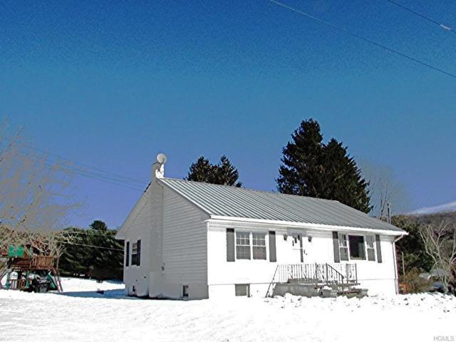 20 Banuat Road, Callicoon Center, NY 12724 (MLS #4904228) :: Mark Boyland Real Estate Team