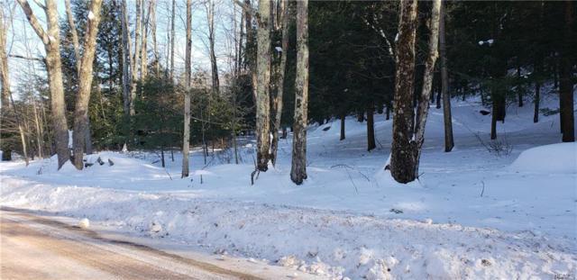 Twin Bridge Road, Liberty, NY 12754 (MLS #4904390) :: Mark Boyland Real Estate Team
