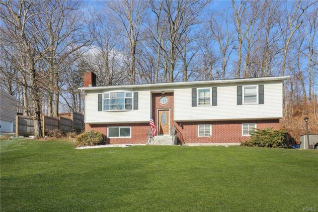11 Boxwood Close, Hopewell Junction, NY 12533 (MLS #4904398) :: Stevens Realty Group