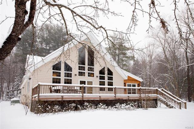 368 Fox Mountain Road, Livingston Manor, NY 12758 (MLS #4904401) :: Mark Boyland Real Estate Team