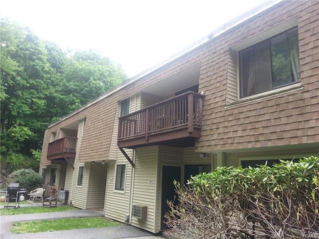 914 Vista On The #914, Carmel, NY 10512 (MLS #4904404) :: William Raveis Baer & McIntosh