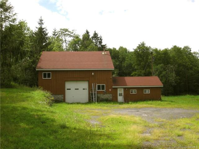 3858 State Route 52, Youngsville, NY 12791 (MLS #4904694) :: Mark Seiden Real Estate Team