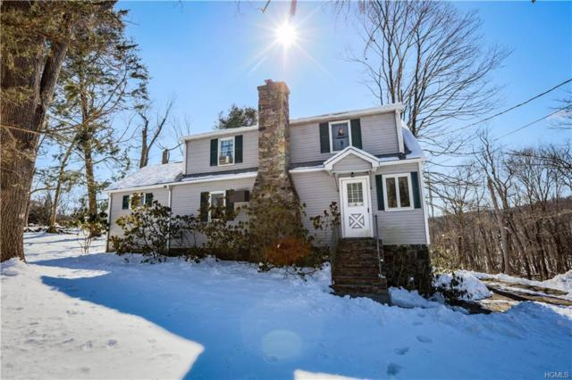611 E Branch Road, Patterson, NY 12563 (MLS #4904705) :: Mark Seiden Real Estate Team