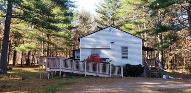 20 Travis Drive, Cuddebackville, NY 12729 (MLS #4904877) :: Shares of New York