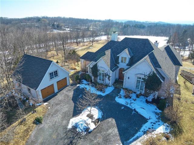 237 Pumpkin Lane, Clinton Corners, NY 12514 (MLS #4904899) :: Mark Seiden Real Estate Team