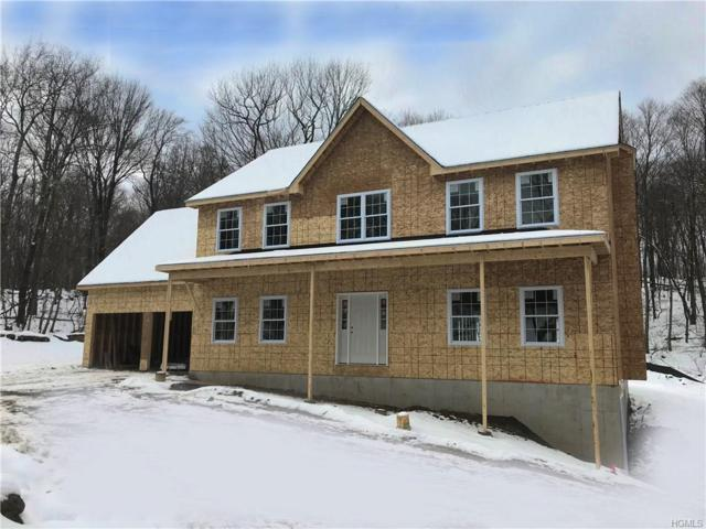409 Depot Hill Road, Poughquag, NY 12570 (MLS #4904938) :: Shares of New York