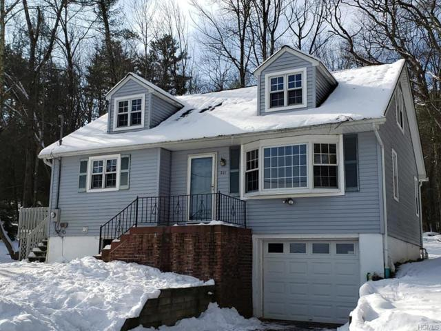 237 Eldred Yulan Road, Yulan, NY 12792 (MLS #4904967) :: Stevens Realty Group