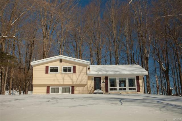 56 Little Pond Road, Hurleyville, NY 12747 (MLS #4905078) :: Stevens Realty Group
