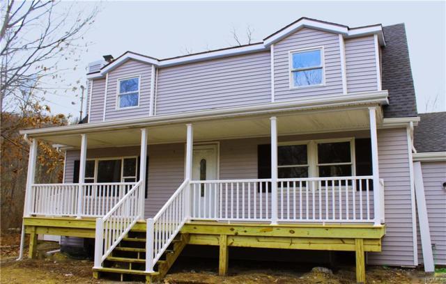 148 Lewis Lane, Wallkill, NY 12589 (MLS #4905210) :: Mark Boyland Real Estate Team