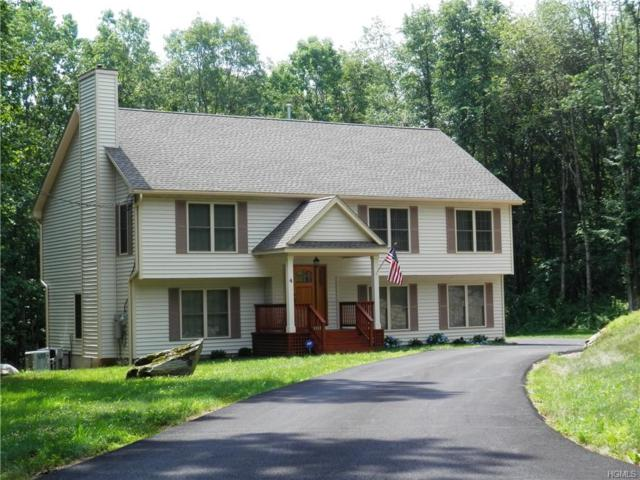 501 Bullet Hole Road, Patterson, NY 12563 (MLS #4905247) :: Stevens Realty Group