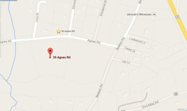 35 Agnes Road, New Windsor, NY 12553 (MLS #4905282) :: Mark Boyland Real Estate Team