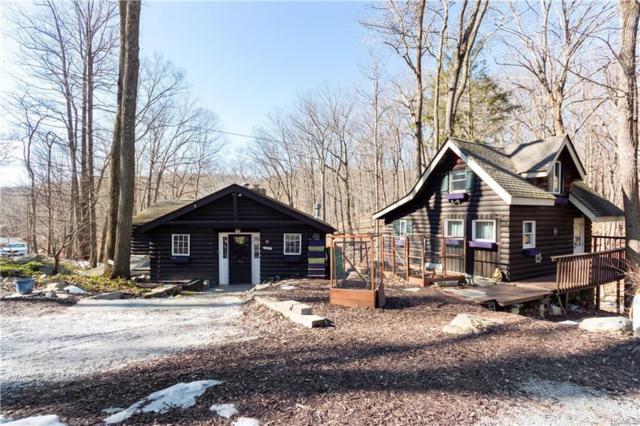 43 Trail Of The Hemlocks, Putnam Valley, NY 10579 (MLS #4905356) :: Shares of New York