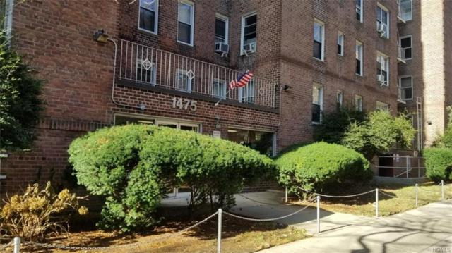 1475 Thieriot Avenue 1B, Bronx, NY 10460 (MLS #4905404) :: Mark Boyland Real Estate Team