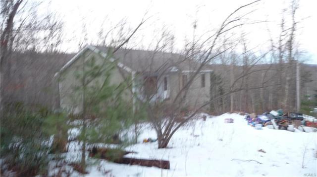 10 Brook Trail, Wurtsboro, NY 12790 (MLS #4905445) :: Shares of New York