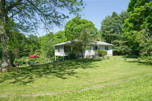 103 Lake Ellis Road, Wingdale, NY 12594 (MLS #4905540) :: Mark Boyland Real Estate Team