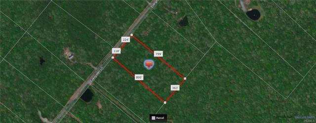 Lot 9 Evergreen Lane, Narrowsburg, NY 12764 (MLS #4905547) :: Mark Seiden Real Estate Team