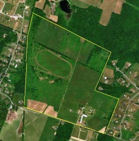 163 Denniston Road, Wallkill, NY 12589 (MLS #4905753) :: Mark Boyland Real Estate Team
