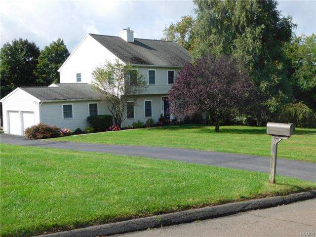 9 Coventry Lane, Brewster, NY 10509 (MLS #4905762) :: Mark Boyland Real Estate Team