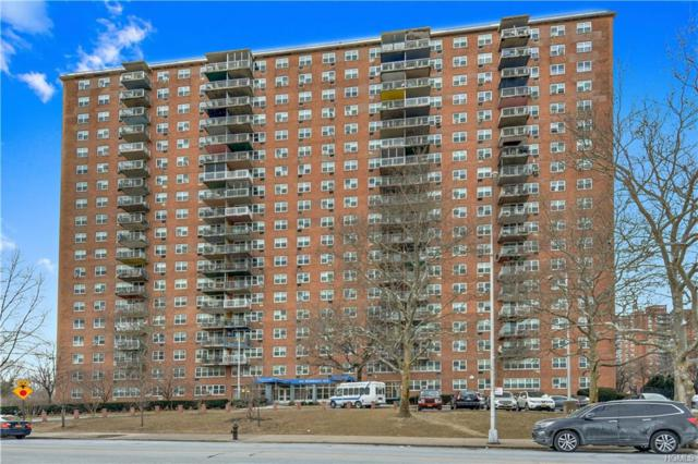 825 Morrison Avenue 19L, Bronx, NY 10473 (MLS #4905826) :: Mark Boyland Real Estate Team