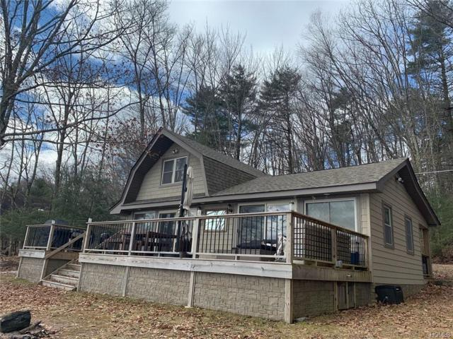 44 Devenoge Drive, Highland Lake, NY 12743 (MLS #4905884) :: Stevens Realty Group
