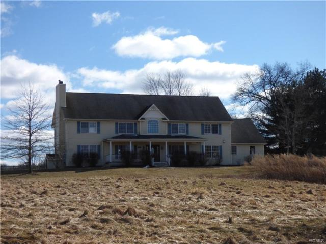 107 Dunthorne Drive, Bloomingburg, NY 12721 (MLS #4905912) :: Shares of New York