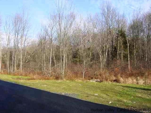 Huckleberry Turnpike, Plattekill, NY 12568 (MLS #4906091) :: Mark Boyland Real Estate Team