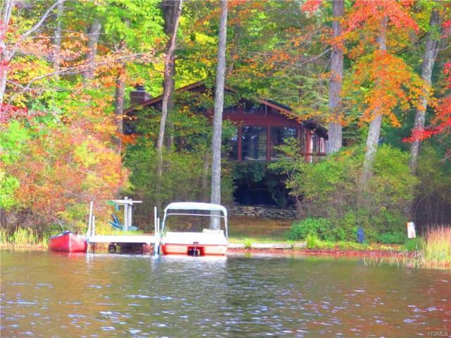 142 Lake Drive, Glen Spey, NY 12737 (MLS #4906105) :: Stevens Realty Group