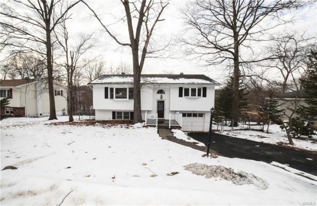 317 Walnut Avenue, New Windsor, NY 12553 (MLS #4906153) :: Stevens Realty Group