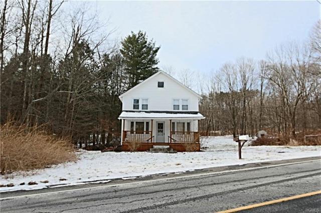 1240 Shandelee Road, Livingston Manor, NY 12758 (MLS #4906187) :: Mark Boyland Real Estate Team