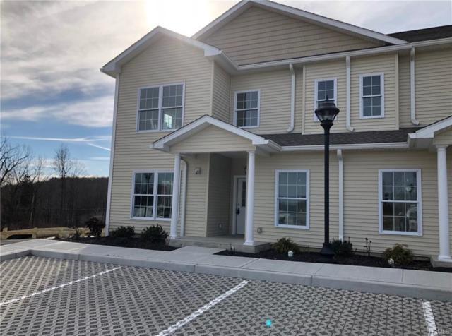 1204 Pankin Drive #1204, Carmel, NY 10512 (MLS #4906200) :: Mark Boyland Real Estate Team