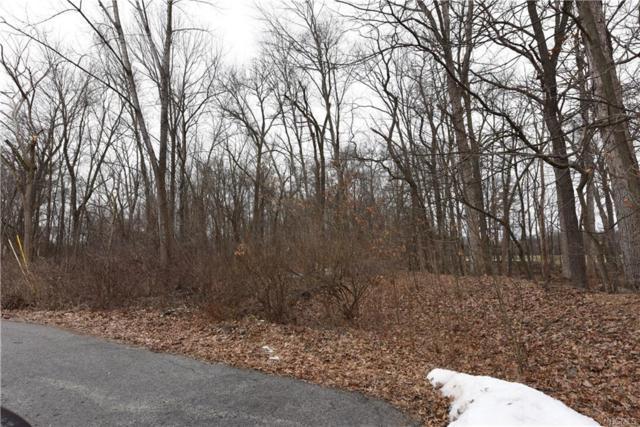 23 Cavalin Drive, Montgomery, NY 12549 (MLS #4906233) :: Stevens Realty Group