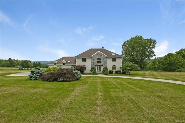 31 Lola Lane, Pawling, NY 12564 (MLS #4906297) :: William Raveis Baer & McIntosh