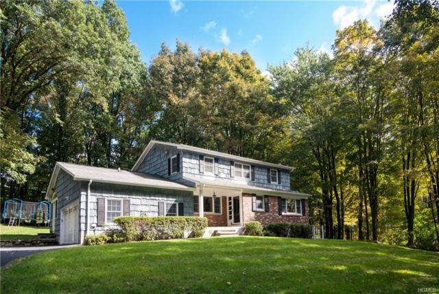 20 Wilner Road, Somers, NY 10589 (MLS #4906308) :: Shares of New York