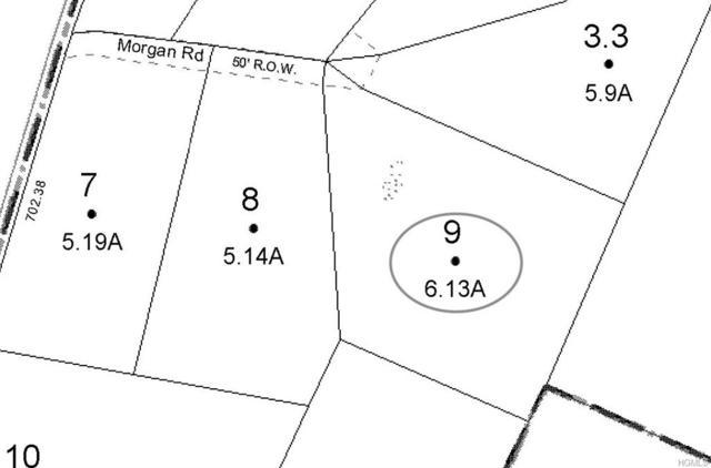 Morgan Road, Livingston Manor, NY 12758 (MLS #4906336) :: Mark Boyland Real Estate Team
