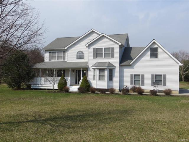 9 Dickerson Drive, Montgomery, NY 12549 (MLS #4906341) :: William Raveis Baer & McIntosh