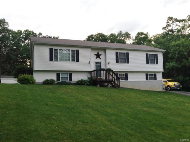 33 Bull Road, Otisville, NY 10963 (MLS #4906380) :: Shares of New York