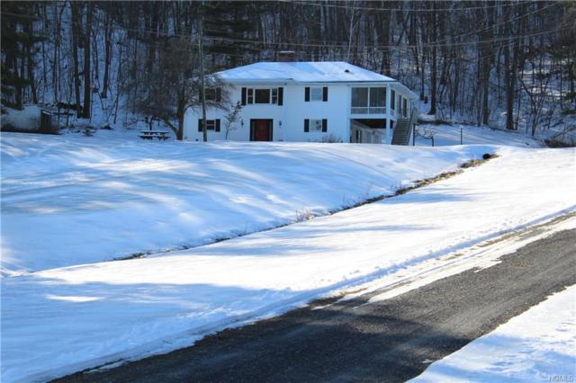 547 Lake Road, Pine Plains, NY 12567 (MLS #4906440) :: Shares of New York