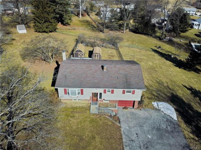 19 Wood Road, Chester, NY 10918 (MLS #4906495) :: William Raveis Baer & McIntosh
