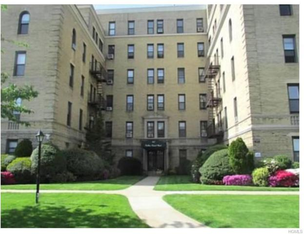 43 Calton Road 1F, New Rochelle, NY 10804 (MLS #4906681) :: William Raveis Legends Realty Group