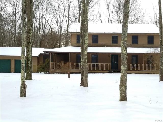 2 Amani Drive, Gardiner, NY 12525 (MLS #4907109) :: Mark Boyland Real Estate Team